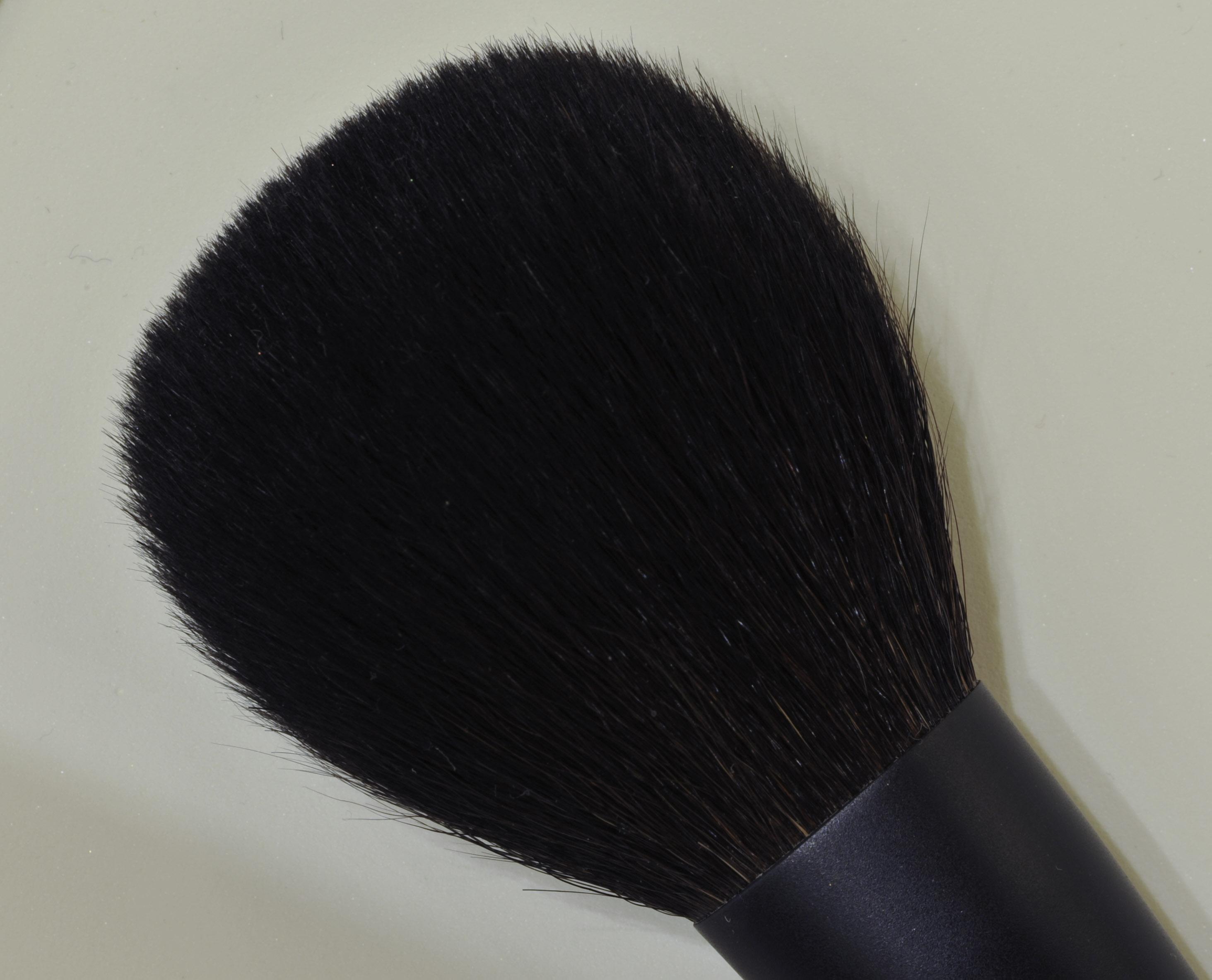rmkpowderbrush